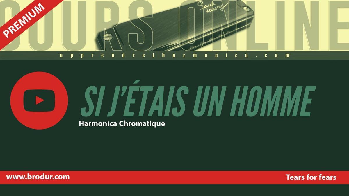 Diane Tell - Si J'etais Un Homme - Harmonica chromatique