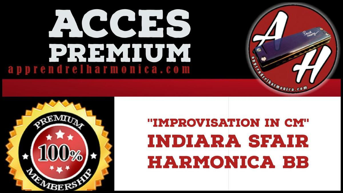 Indiara Sfair - Improvisation in Cm - Harmonica Bb
