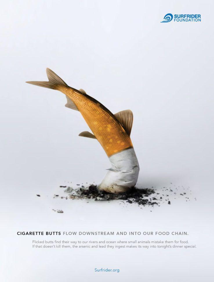 Buzz : La clope détruit les fonds marins