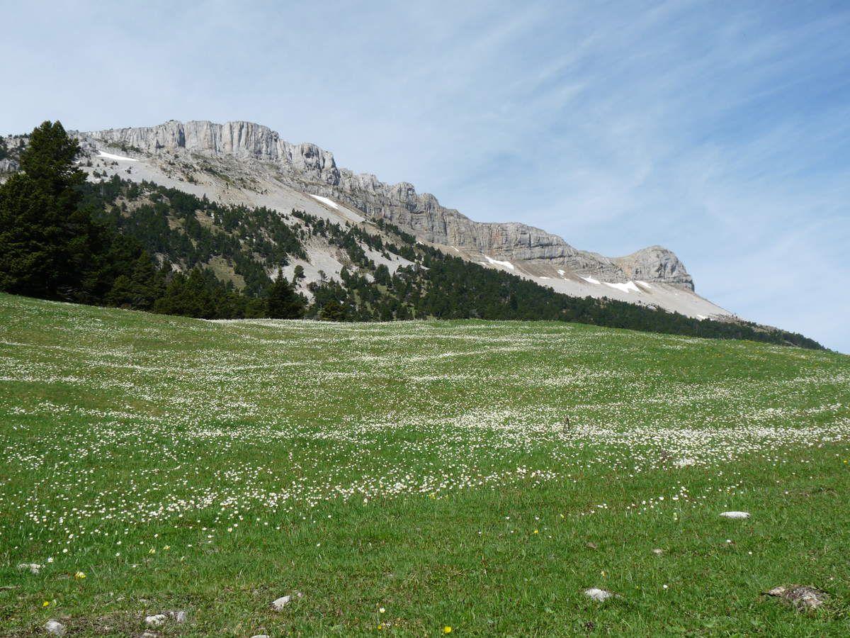 Photos prises le 7 mai 2015 sur cettemême randonnée