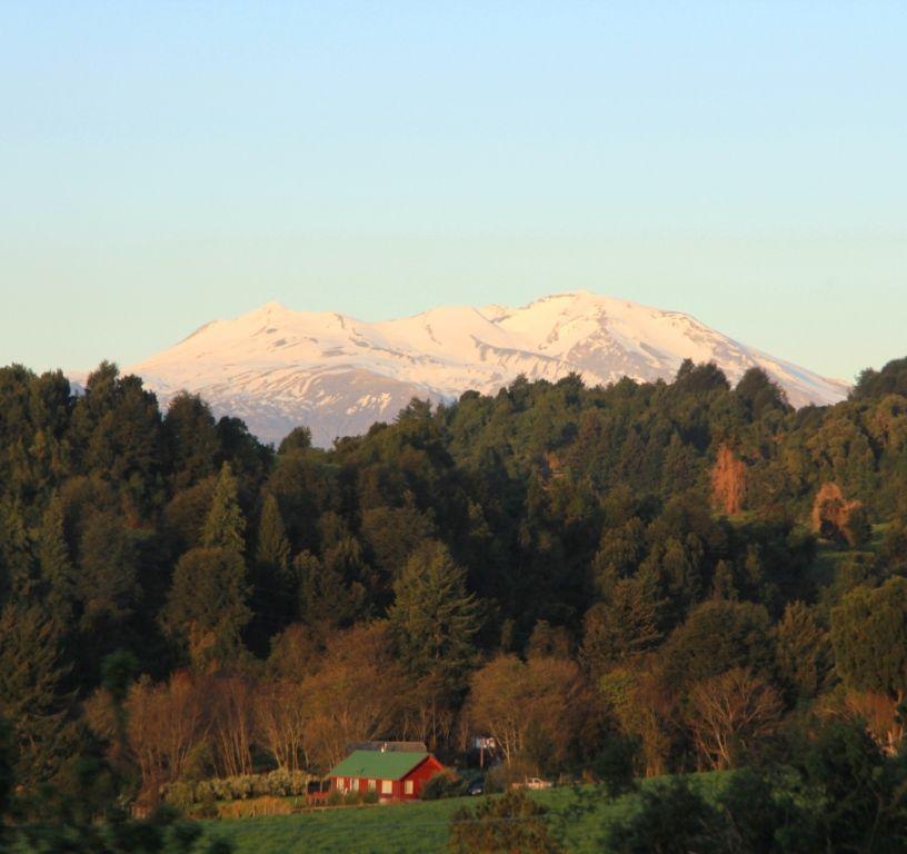 111 CHILI - PATAGONIE 2013