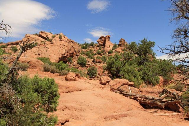 124 Canyonlands - Utah