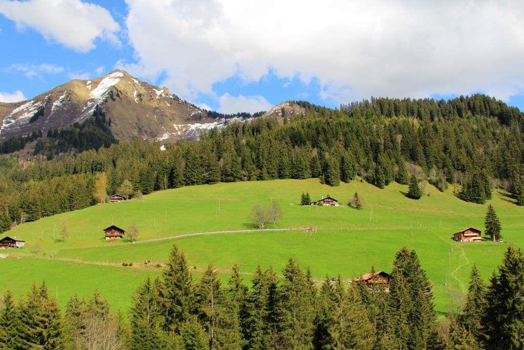 Paysages de la Suisse alémanique - Au Printemps