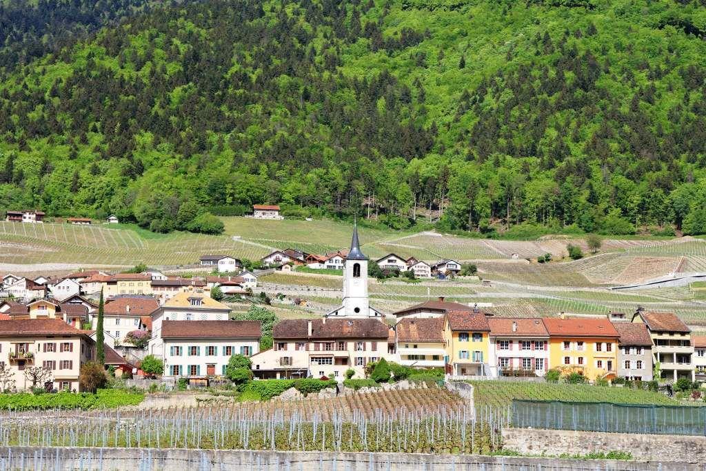 136 Vevey - Suisse