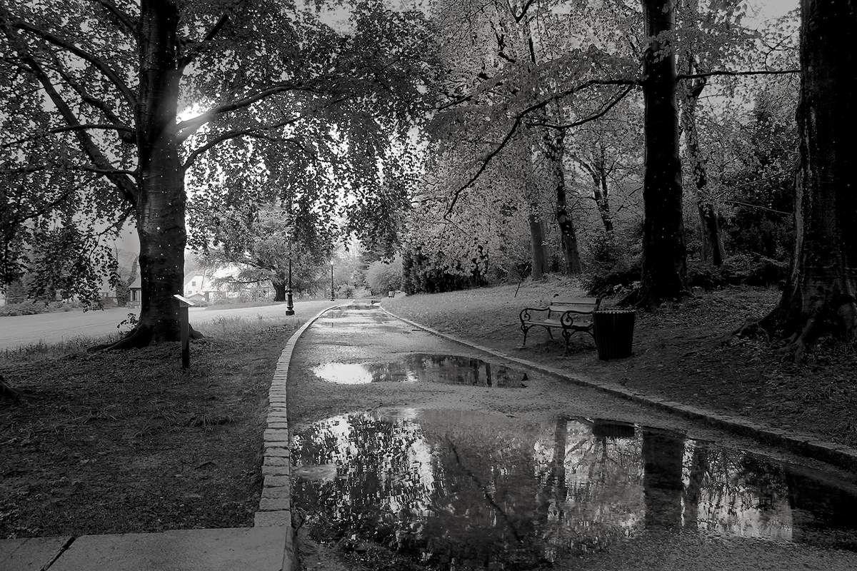 Parc Villa Burrus après la pluie