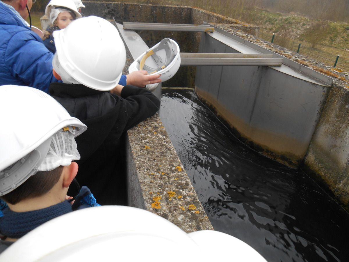 ...INCROYABLE !!! L'eau a vraiment été purifiée, alors que nous l'avions vue si marron, en début de parcours et si malodorante!