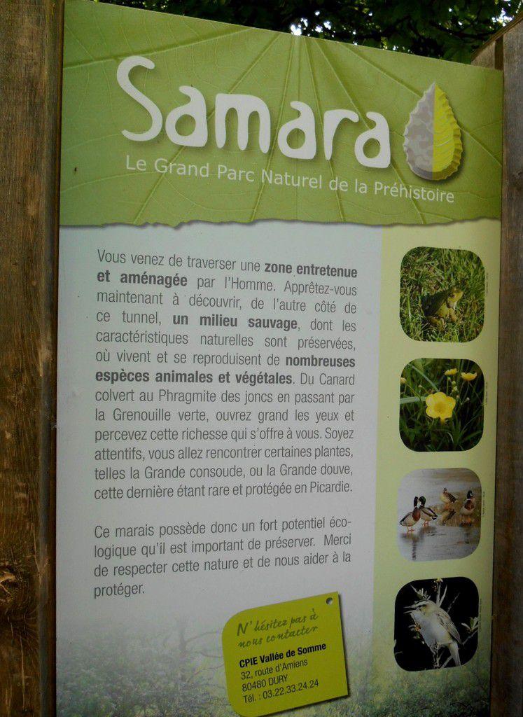 CE2: Visite du Parc de SAMARA