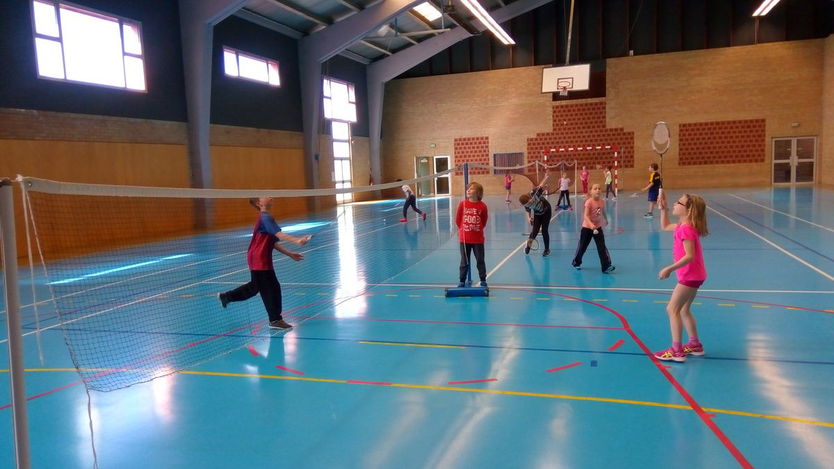 CE2 /  fin du cycle badminton