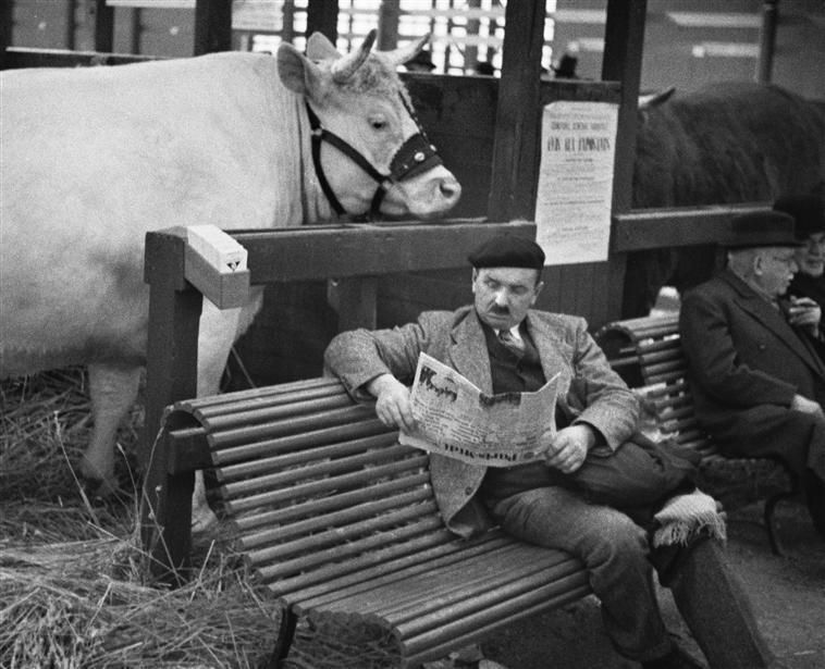 1931 Salon de l'agriculture Paris