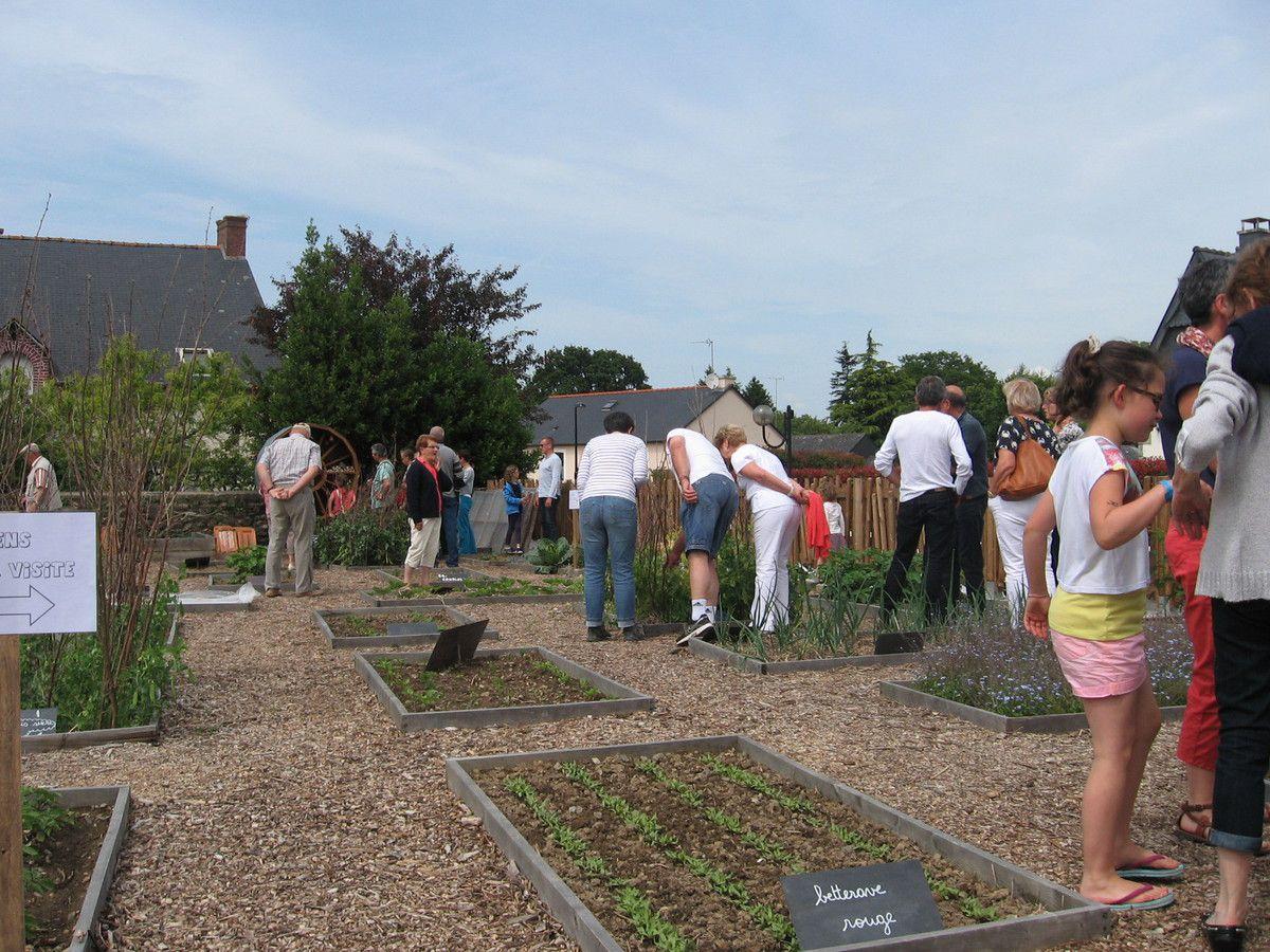 Bienvenue dans mon jardin 400 visiteurs le blog de for Bienvenue dans mon jardin