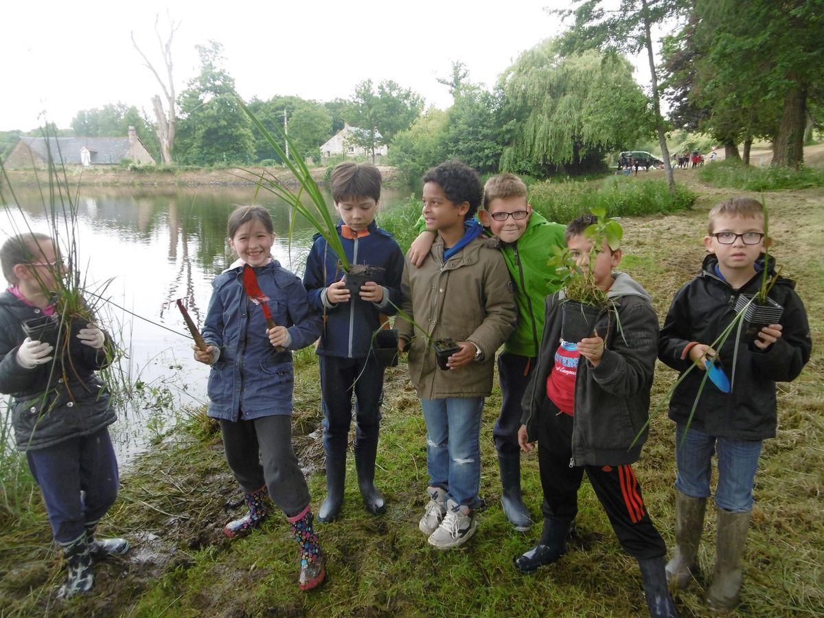 Les CE2 ramassent des plantes aquatiques pour le nouveau  bassin de l'école