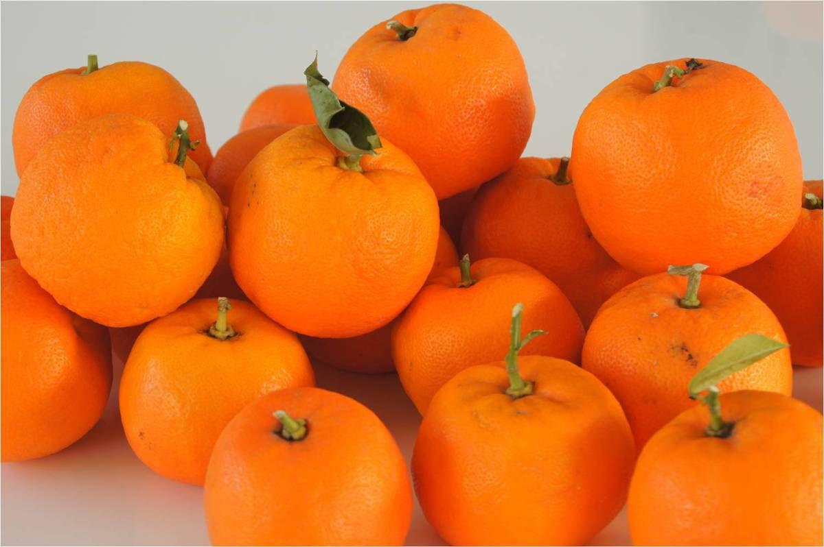 formation 3 oranges