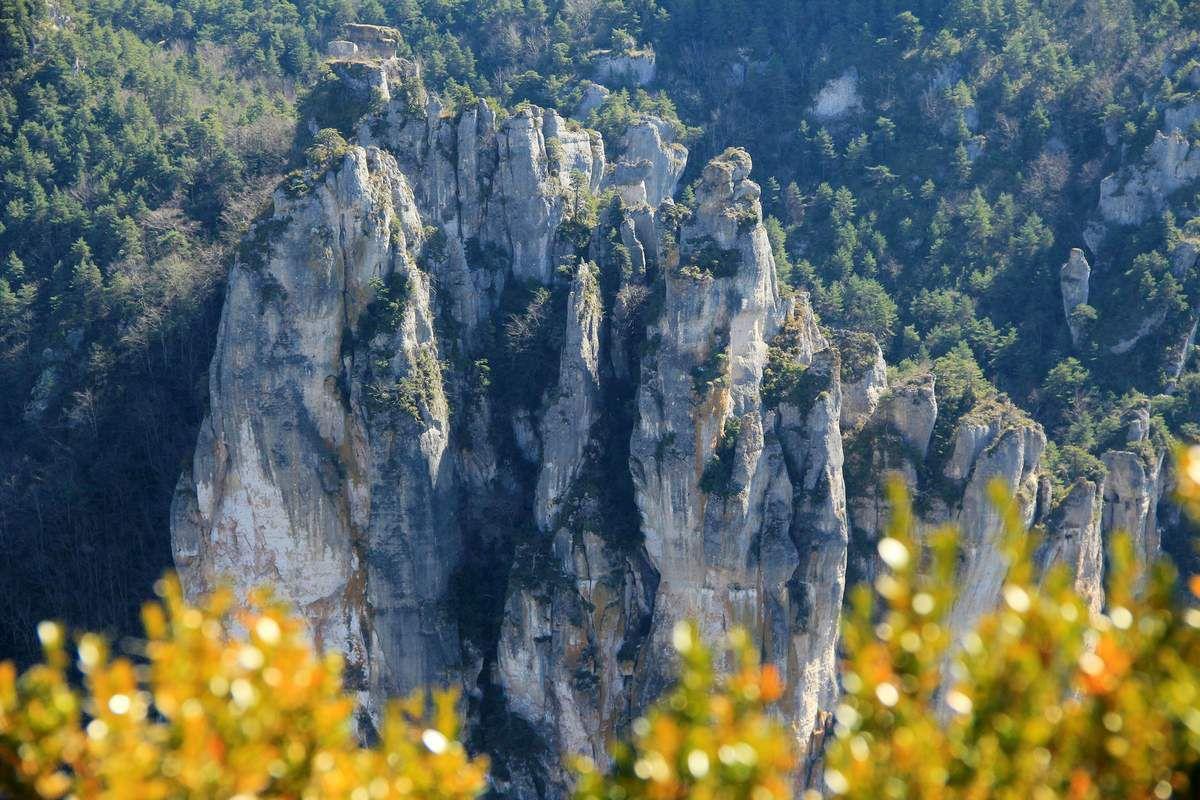 Dans les gorges de la Jonte et du Tarn, à la rencontre des vautours et des amateurs d'escalade, des panoramas époustouflants...