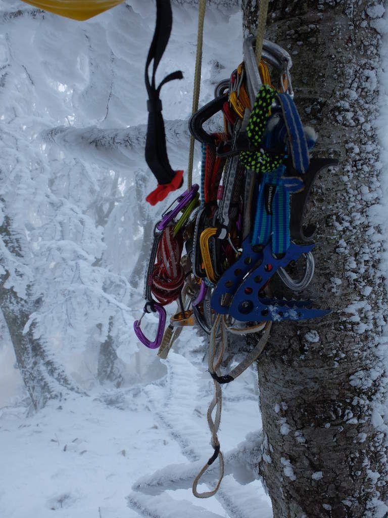 Brouillard ce matin et dégâts hivernaux: jeune chevreuil mort et arbre tombé sur la route suite aux coups de vents des semaines précédentes. Nous sortons le matos: coinceurs et ancres à glaces...