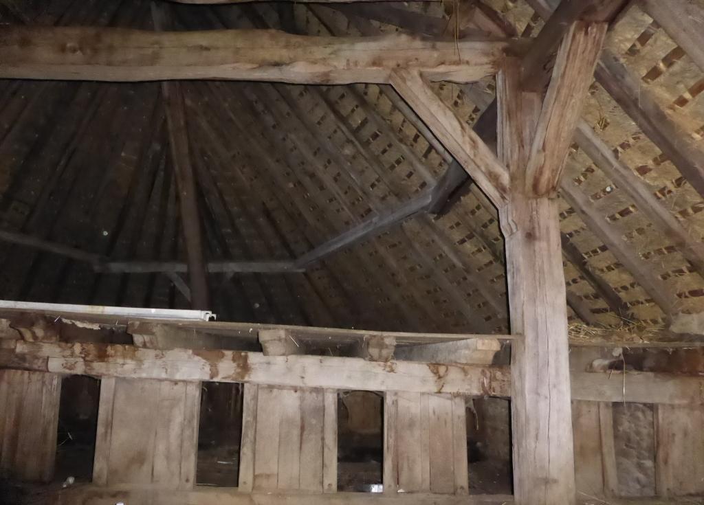 Quand une grange ovalaire retrouve son toit de chaume