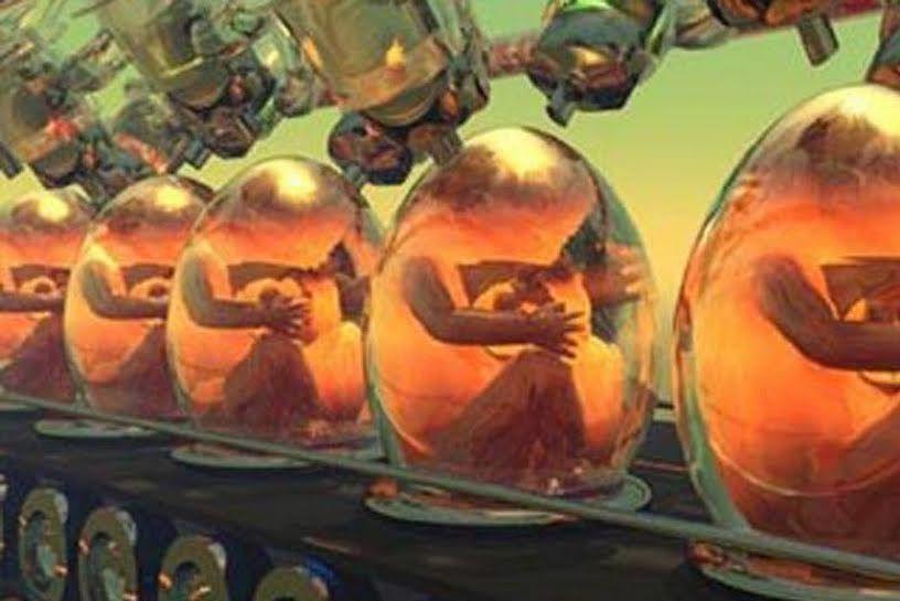 Recherches sur l'embryon : cinq autorisations reconnues illégales