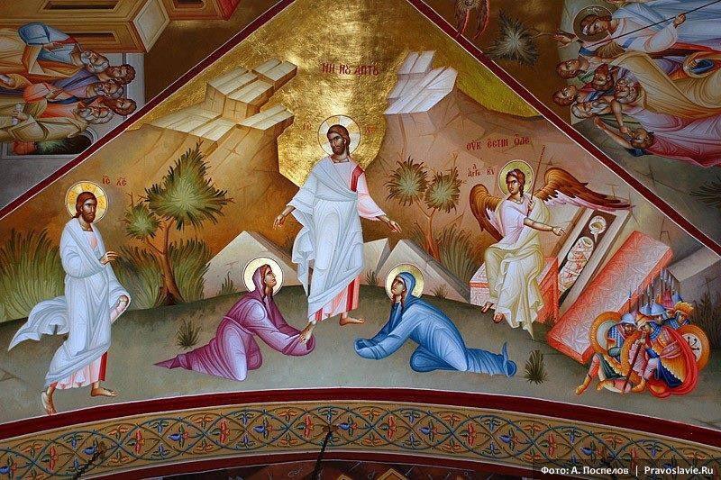 Je te salue, Marie, Mère de Dieu, trésor vénéré de tout l'univers, lumière qui ne s'éteint pas, toi de qui est né le soleil de la justice, sceptre de la vérité, temple indestructible. Je te salue, Marie, demeure de celui qu'aucun lieu ne contient, toi qui as fait pousser un épi qui ne se flétrira jamais. Par toi les bergers ont rendu gloire à Dieu, par toi est béni, dans l'Évangile, celui qui vient au nom du Seigneur. Par toi la Trinité est glorifiée, par toi la croix est adorée dans l'univers entier. Par toi exultent les cieux, par toi l'humanité déchue a été relevée. Par toi le monde entier a enfin connu la Vérité. Par toi, sur toute la terre, se sont fondées des églises. Par toi le Fils unique de Dieu a fait resplendir sa lumière sur ceux qui étaient dans les ténèbres, assis à l'ombre de la mort. Par toi les apôtres ont pu annoncer le salut aux nations. Comment chanter dignement ta louange, Ô Mère de Dieu, par qui la terre entière tressaille d'allégresse.  Saint Cyrille d'Alexandrie (v.380-v.444)