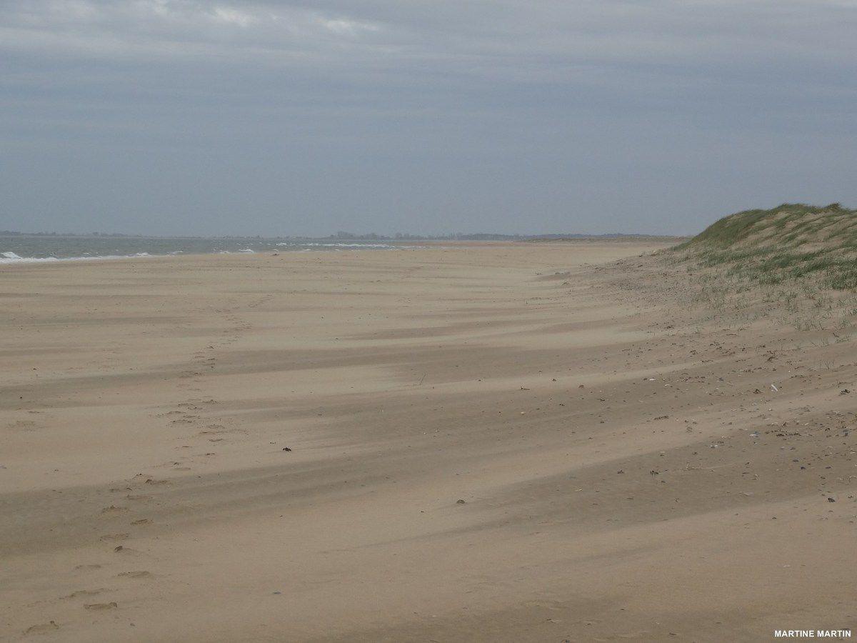 Promenade sur les plages de la Faute sur mer