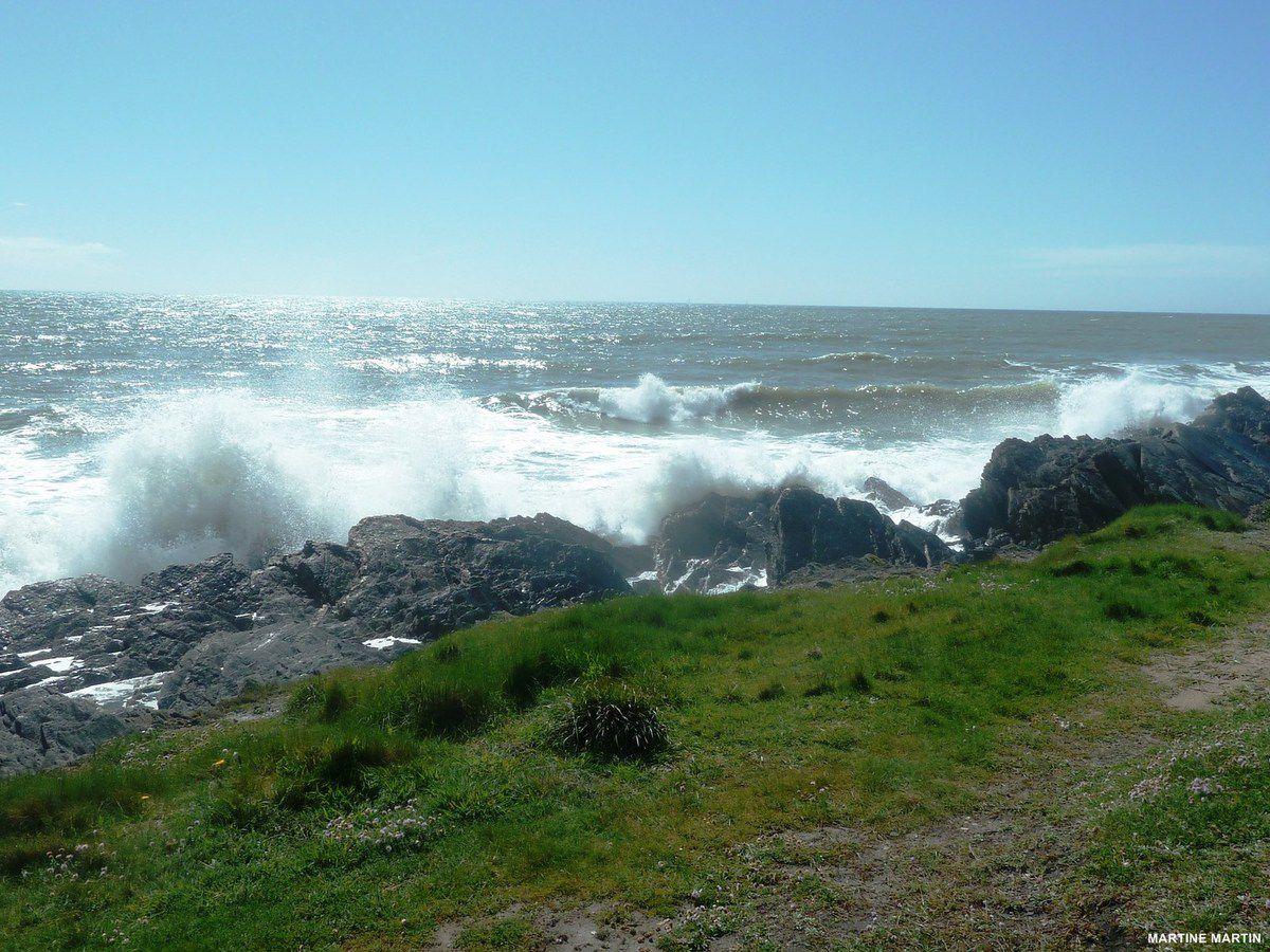 La côte de Cayola à Talmont Saint-Hilaire