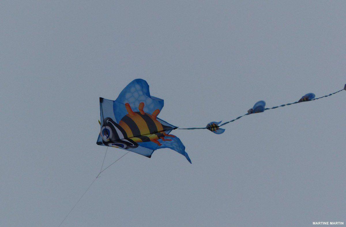 Cerfs volants sur les plages des Sables d'Olonne