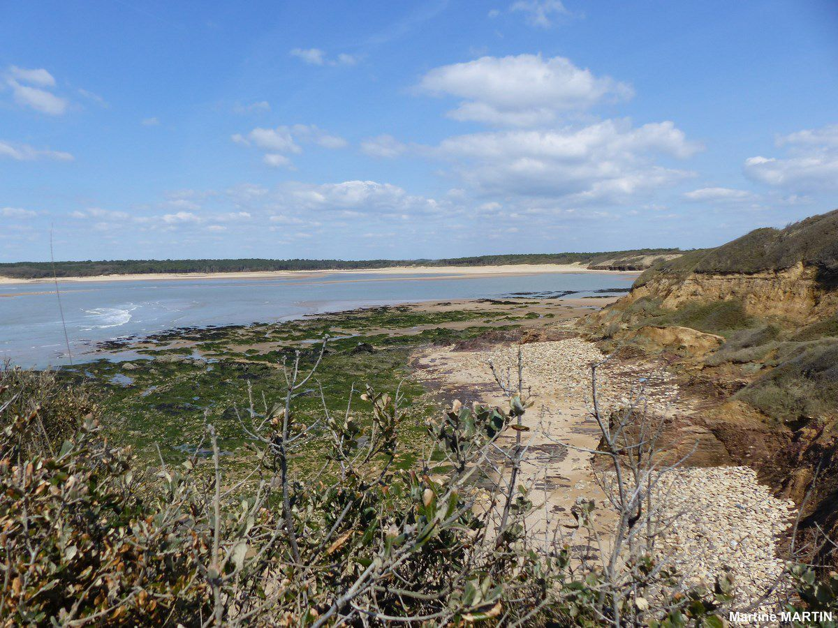 Vue sur le Veillon et Port Bourgenay depuis Jard sur mer