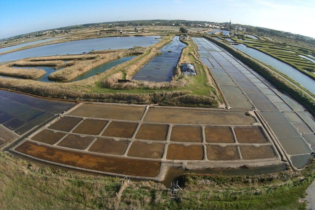 Photos aériennes des marais de l'île d'Olonne
