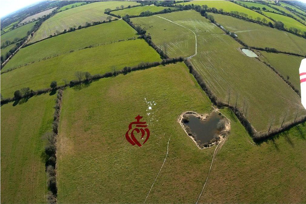 Coeur de Vendée dans un champ du château d'Olonne