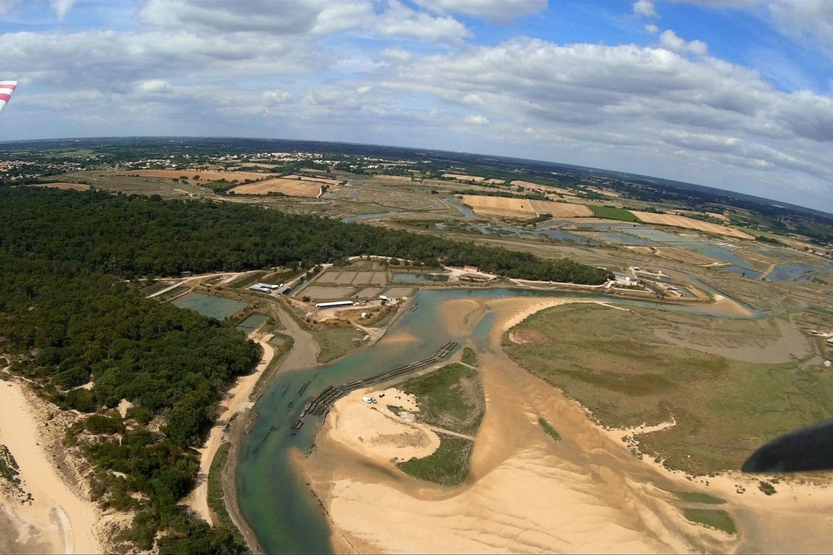 Photos aériennes de l'estuaire du Payré