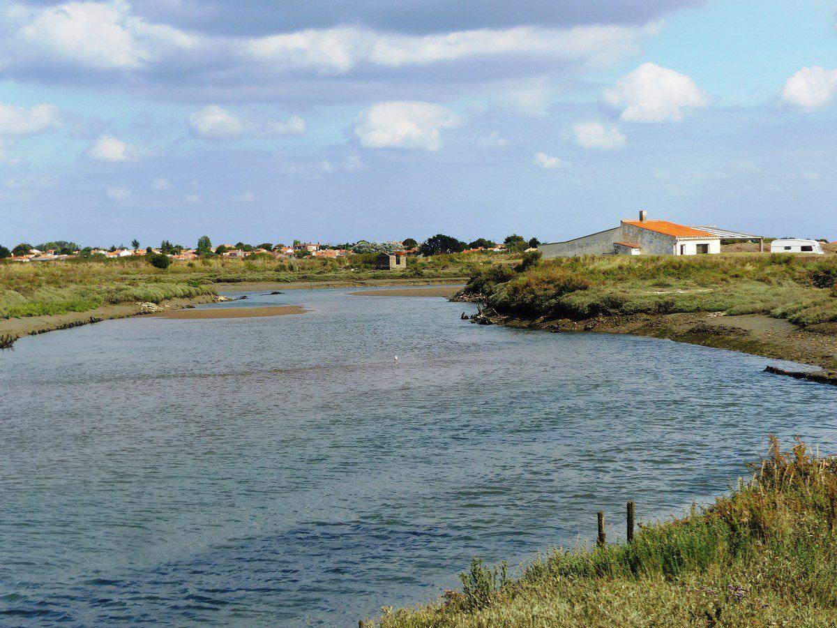 Randonnée dans l'estuaire du payré à Marée basse