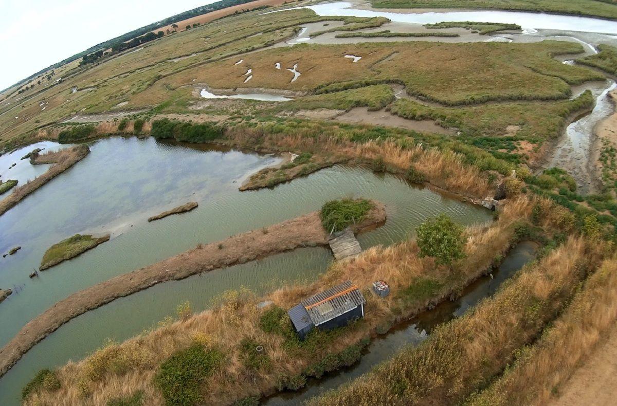 Photos aériennes des marais de la Guittière
