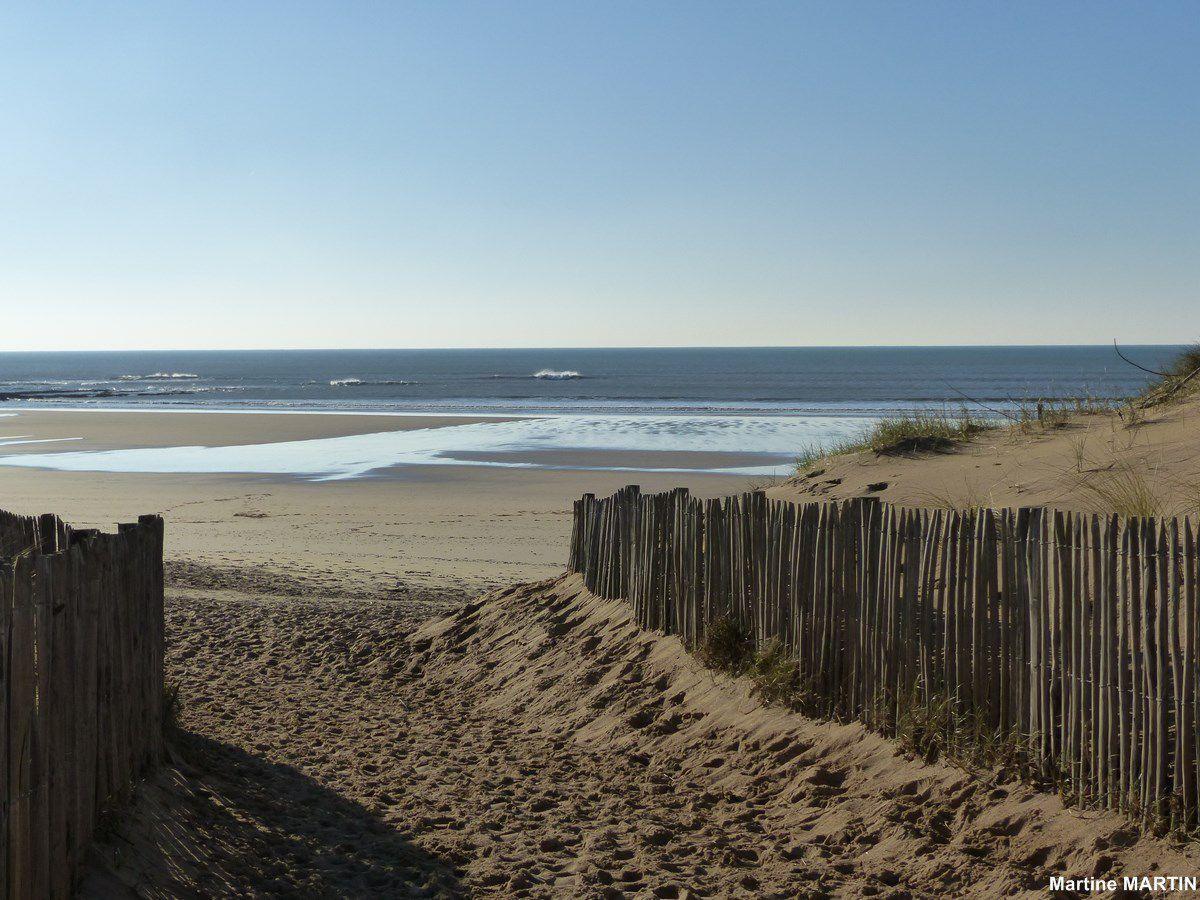 Sur la plage de sauvetere d 39 olonne brem sur mer la for Piscine des chirons olonne sur mer