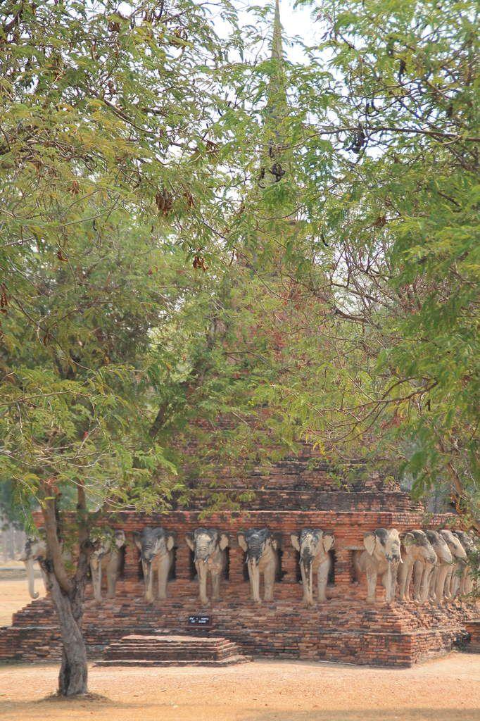Temples, piscine et rencontre surprise à Sukhothai