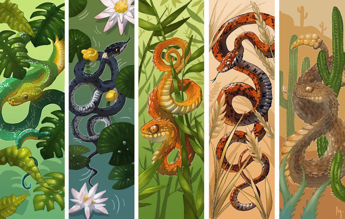 Des reptiles