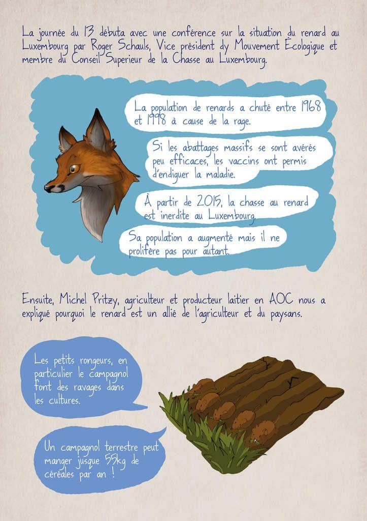 Colloque sur le renard : le compte-rendu