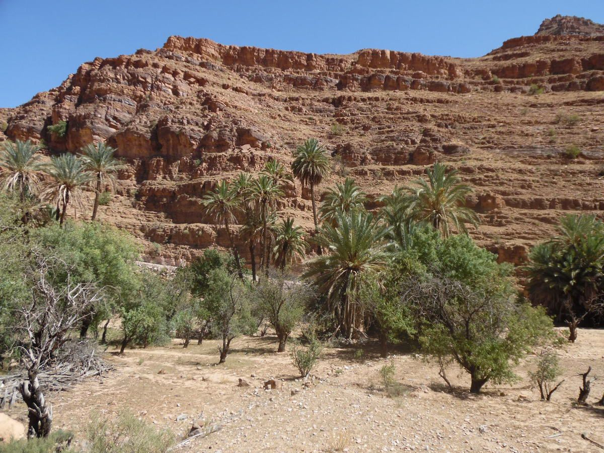 Album : MAROC 2015 Raid des Canyons