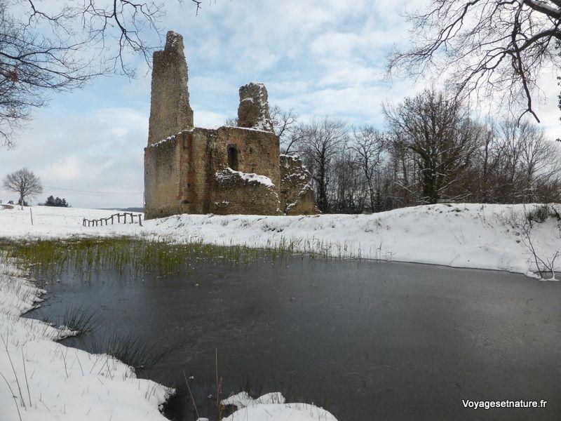 Balade hivernale dans Montfalcon