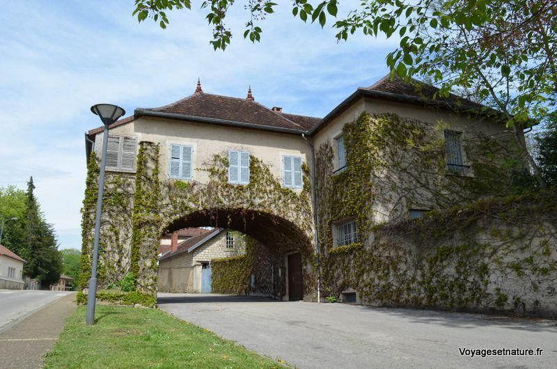 Balade dans le village de Saint-Amour (39)