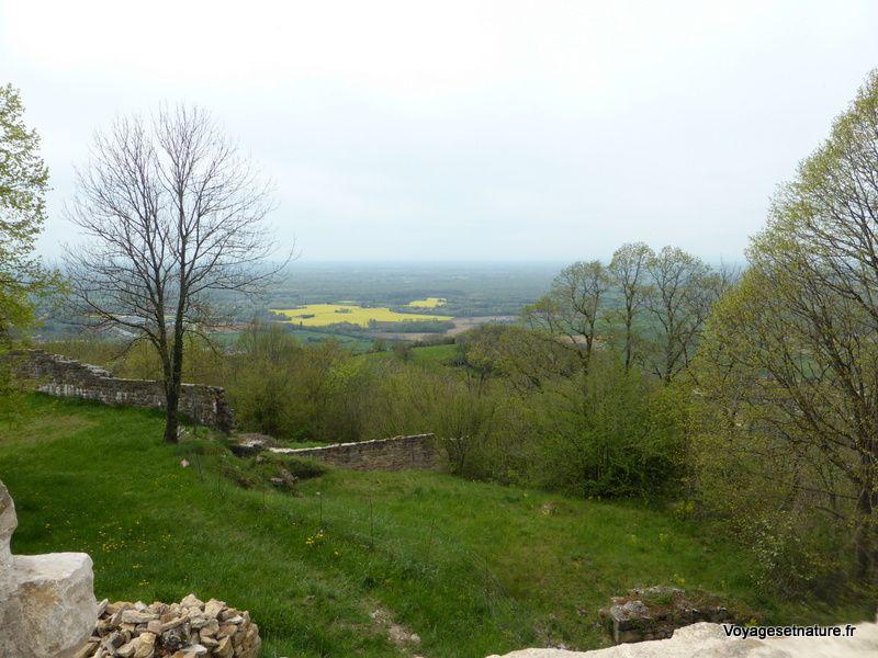 Le château de Chevreaux (39)