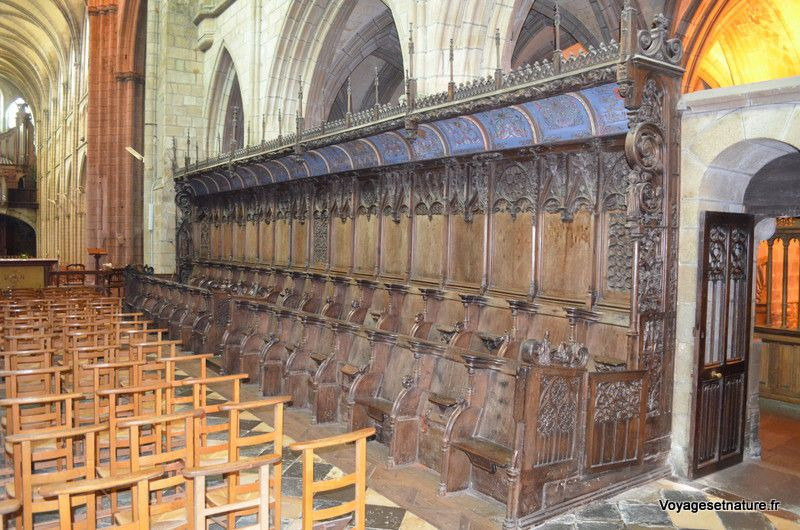 Les stalles de chêne (XVIème siècle) : 66 en tout