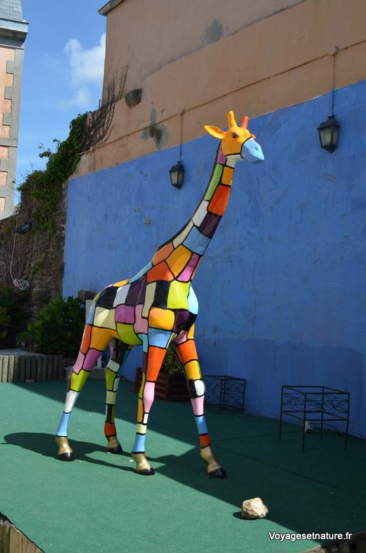 Girafe bigoudenne