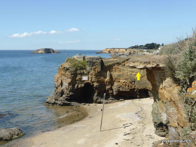 A Pénestin, à la pointe du Bile, la côte recule dangereusement (flèche jaune)