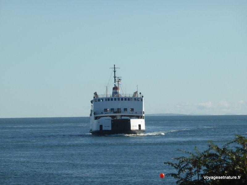 L'estuaire du St-Laurent
