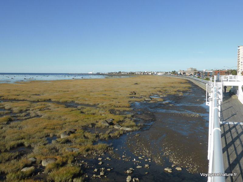 "Promenade du bord de ""mer"" à Rimouski"