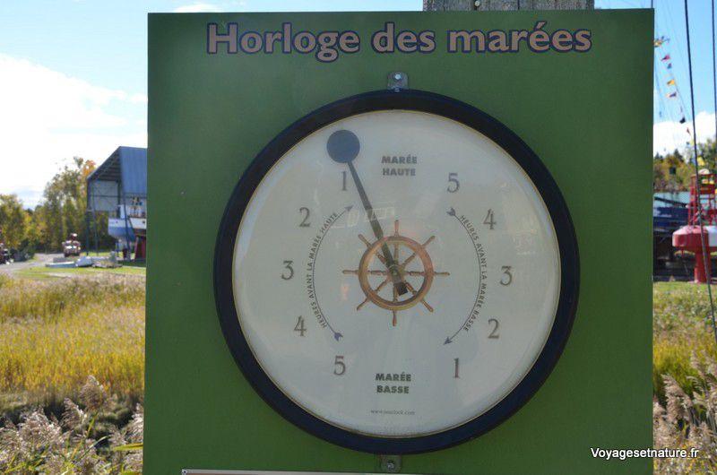 Indicateur de l'évolution de la marée sur le St-Laurent