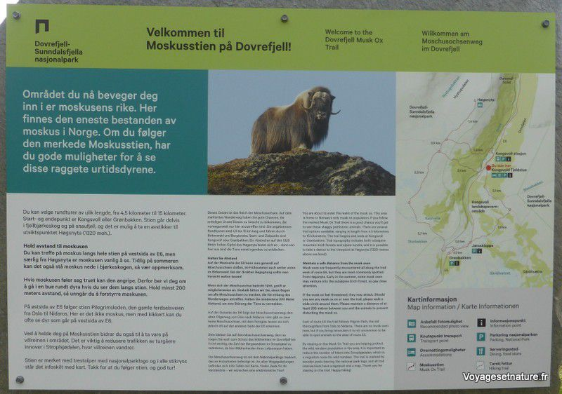 Départ d'un sentier à la gare de Kongsvoll