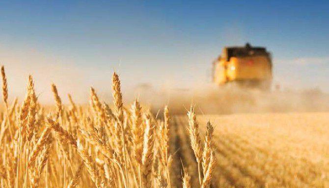 Ecophyto : pour la protection des travailleurs de l'agriculture, la FGA-CFDT demande l'interdiction des produits phytosanitaires les plus dangereux : CMR 1 et 2