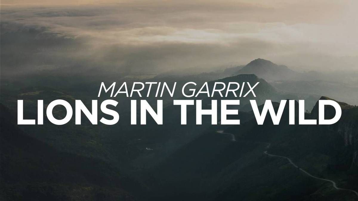 Martin Garrix, Third Party &amp&#x3B; John Martin - Lions in the Wild