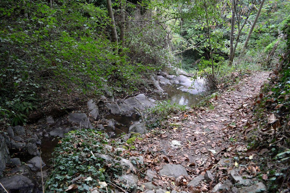 La cascade de Malleval et le sentier qui y conduit....