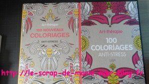 Art thérapie ou coloriage pour adultes