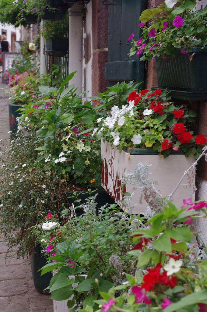 Des rues toutes fleuries.